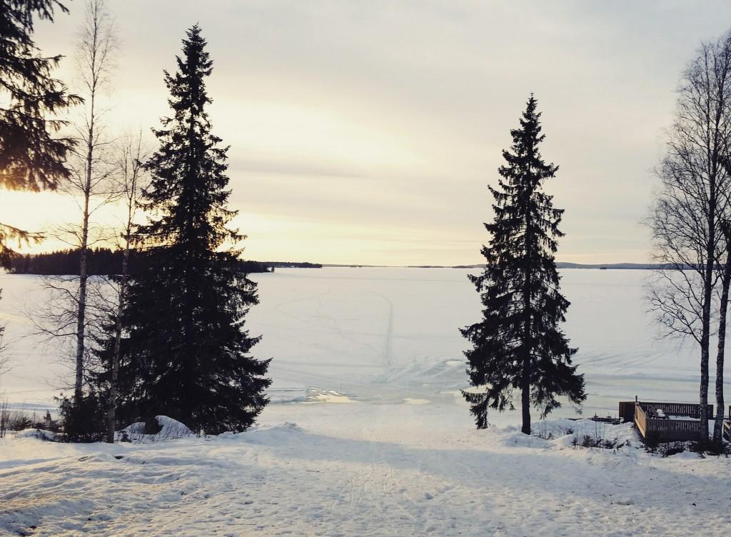 Vuokatinmaa Nuasjärvi Lähimatkailija